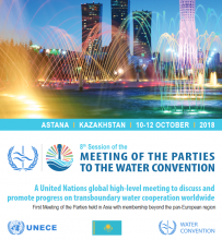Eighth session of the Meeting of the Parties to the Water Convention